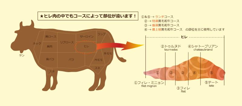 ヒレ肉の部位案内